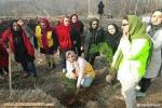 بزرگداشت هفته درخت کاری توسط کوه بانوان گروه گونش هادیشهر