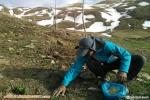 گزارش تصویری کاشت بذر توسط کوهنوردان