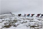 همایش بزرگ صعود شمالغرب کشور به قله ۳۳۴۷ متری کیامکی