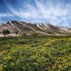 همایش صعود به قله سهند به میزبانی هیات شهرستان بستان آباد